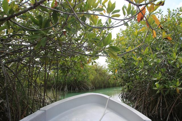 L'antico canale nella Riserva della Biosfera di Sian Ka'an