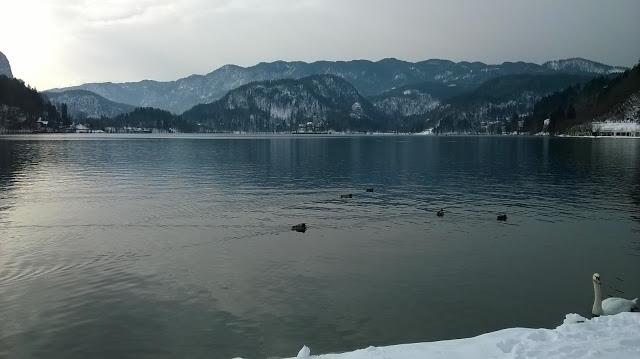 Il romantico lago di Bled