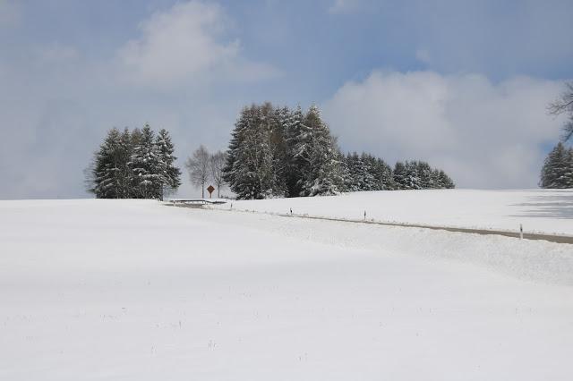 Panorami innevati verso Konigsfeld nella Foresta Nera